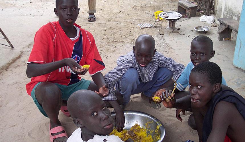 Kinderhilfe Senegal 1994 e.V. gemeinnütziger Verein